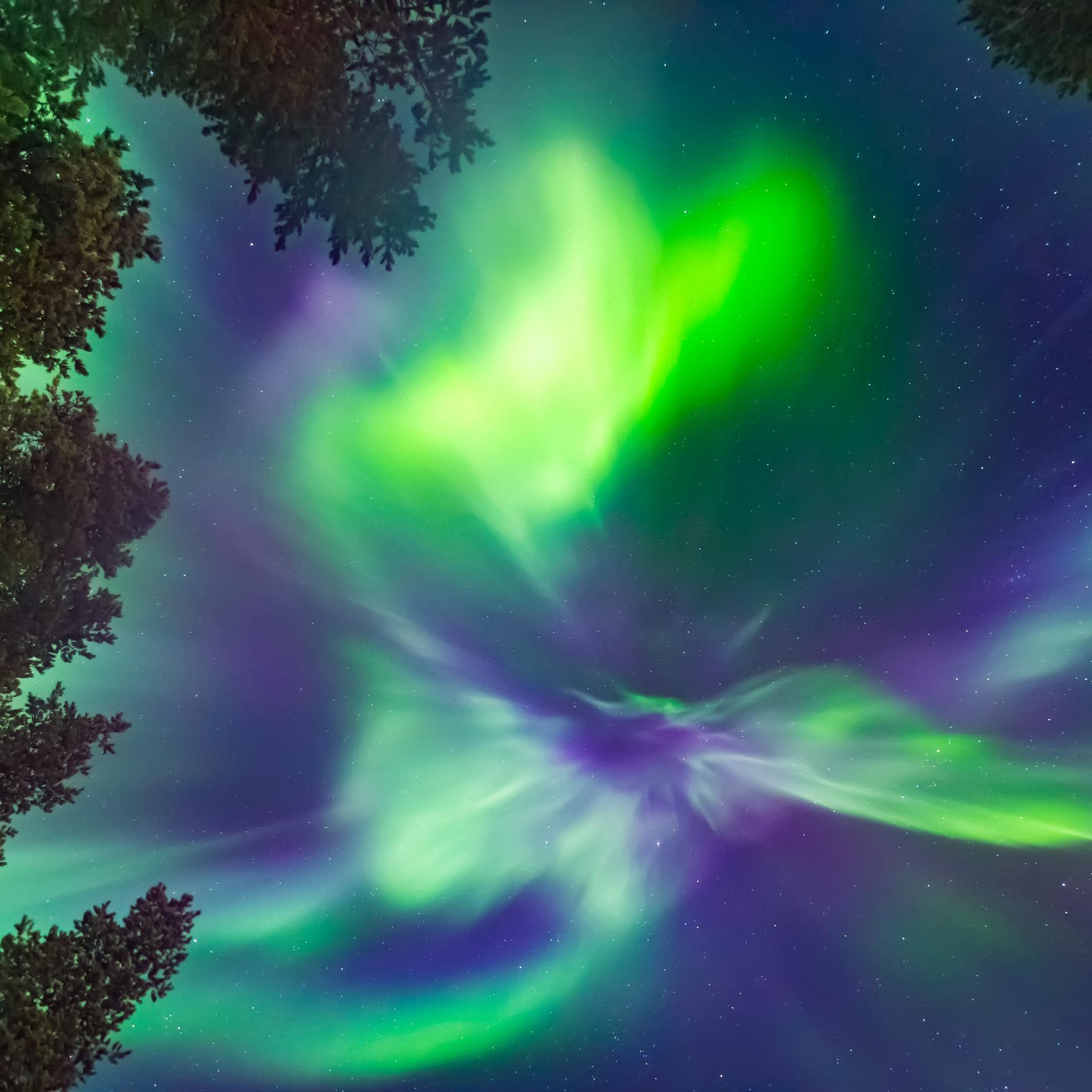 Polarlicht von unten fotografiert